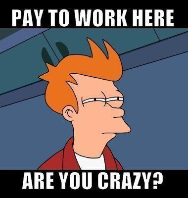 Pay to work here are you crazy?