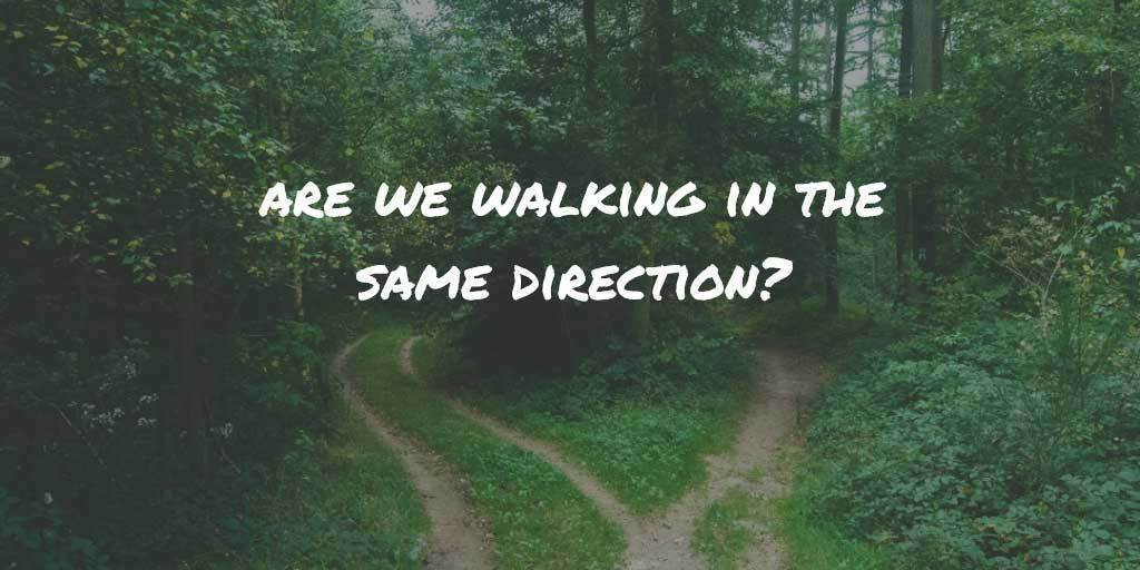 Are we walking in the same direction? Diverging paths in the woods.