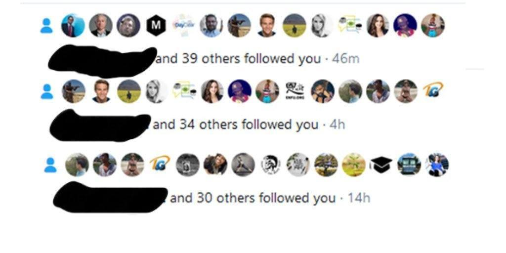 Screenshot showing 100+ Twitter followers in the last 14 hours