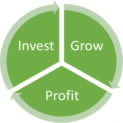 Business growth is related to your investment - flowchart showing invest -> business growth -> profit